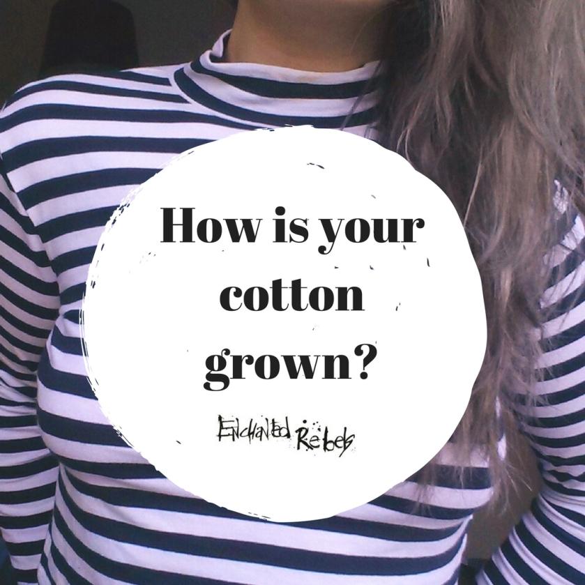 Cotton 0905